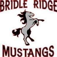 Bridle Ridge
