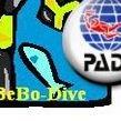 ToBeBo-Dive