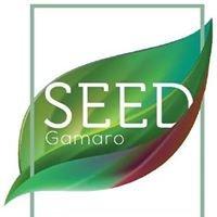 Seed Vila Olímpia