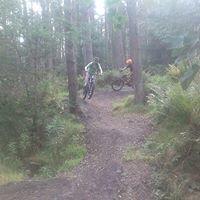 Beecraigs Mountain Bike Trails