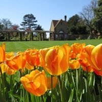 Friends of Bushey Rose Garden