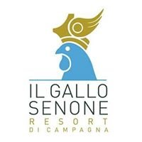 Il Gallo Senone resort