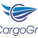 AE CARGO GROUP INC
