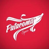 Patacoma Express