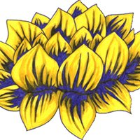 Golden Lotus Yoga Teachers Association