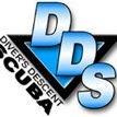 Diver's Descent Scuba