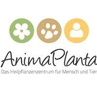 Animaplanta - Das Heilpflanzenzentrum für Mensch und Tier