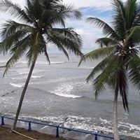 Driftwood Surf Punta Burica