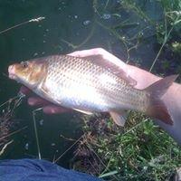 Polehill Coarse Fishery