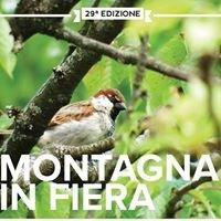 Montagna in Fiera