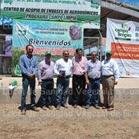 Sanidad Vegetal de Guasave