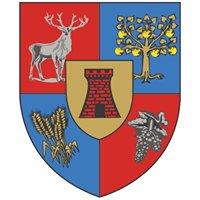 Județul Satu Mare - Consiliul Județean