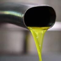 Familija Lužina-Olive Oil
