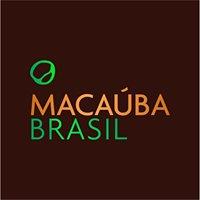 """Macaúba Brasil """"ماكاؤوبا برازيل"""""""
