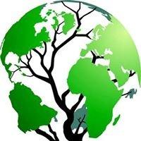 Global Environmental Organisation - GEO