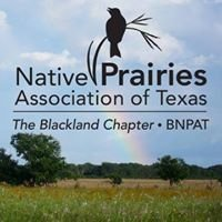 Blackland Prairie Chapter of the Native Prairies Association of Texas