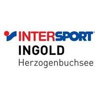 Ingold Sport