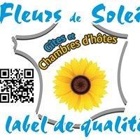 Fleurs de Soleil - Chambres d'hôtes & Gîtes