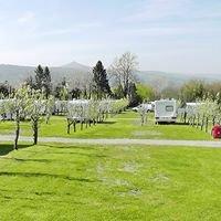 Blossom Park Campsite Nr Abergavenny