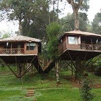 Kerala Treehouse Holidays