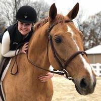 Platinum Equestrian Academy