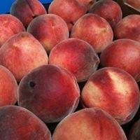 Deua River fruit & Veg. Luke Hemler