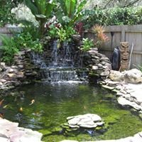 Currys Koi and Ponds