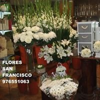 Flores San Francisco