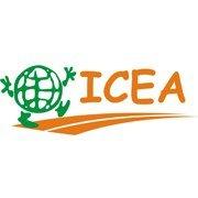 ICEA - образование за границей