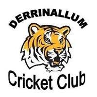 Derrinallum Tigers Cricket Club