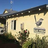Blue Wren Travellers' Rest
