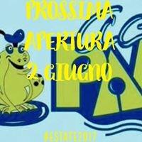 """Piscina """"Il Boschetto"""""""