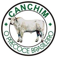 Canchim
