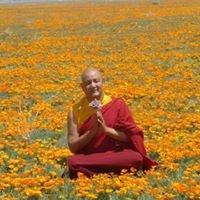 Drikung Kyobpa Choling-Tibetan Meditation Center