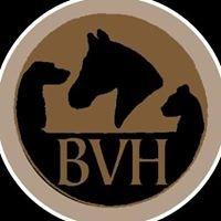 Bathurst Veterinary Hospital