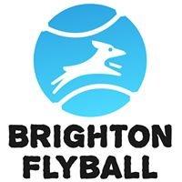 Brighton Flyball