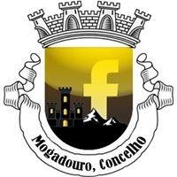 Mogadouro, concelho