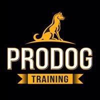 Pro Dog Training