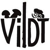 VILDT