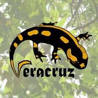 Association Veracruz
