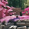 Azalea Path Botanical Garden and Arboretum