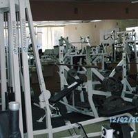 Members Fitness Club