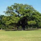 Live Oak Soil & Water Conservation District