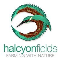 Halcyon Fields