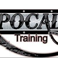Apocalypse Training and Fitness Inc.