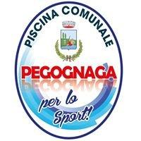 Piscina Pegognaga