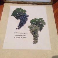 Mann Winery