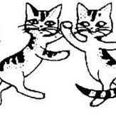 Ecole du chat de Trouville/mer