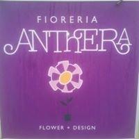 Fioreria Anthera