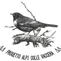 Stazione di inanellamento Progetto Alpi - Colle Vaccera